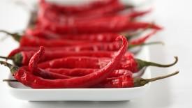 Hot Pepper Macro Hd Widescreen Wallpapers
