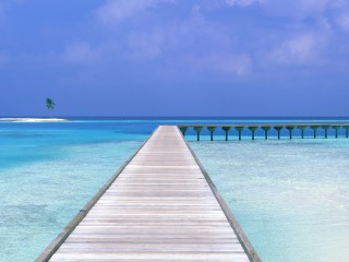Beach Way Iphone Panoramic Wallpaper HD Pic