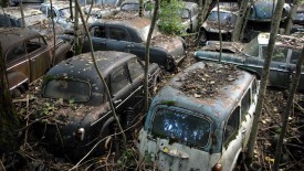 Car Dump Old Cars Desktop
