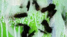 Graffiti Star Wallpaper Widescreen