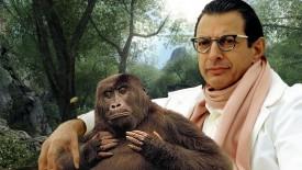 Jeff Goldblum Parody Fantasy Desktop