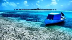 Maldives Clearwater Beach 2013 HD Wallpaper HD Pic