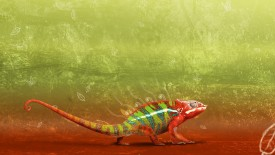 Chameleon Abstract Hd Widescreen Wallpapers