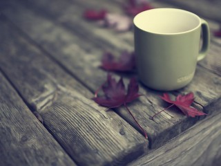 Fall Coffee Hd 1080p Wallpapers Download