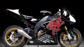 Kawasaki Ninja Sport Motorcycle