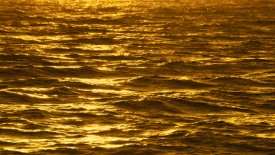 Water Gold Imagination