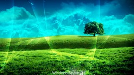 Windows 7 Win  Nature HD