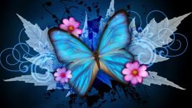 Blue Butterfly Cynthia Selahblue Cynti