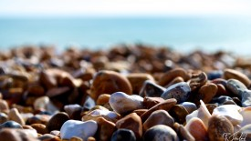 Brighton Beach Stones Hd Widescreen Wallpapers 1920×1200 HD Pic