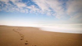 Footprints In The Sand Iphone Panoramic Wallpaper HD Pic
