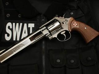 Guns Swat Revolvers Gun