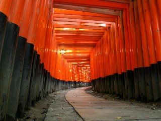Japanese Asian Culture Path