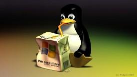 Linux Penguin Windows XP 3D Wallpaper