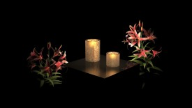 Peaceful Candles Flowers Desktop
