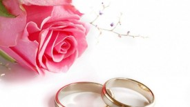 Weddings Rings And Roses