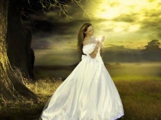 Women White Wedding Dresses